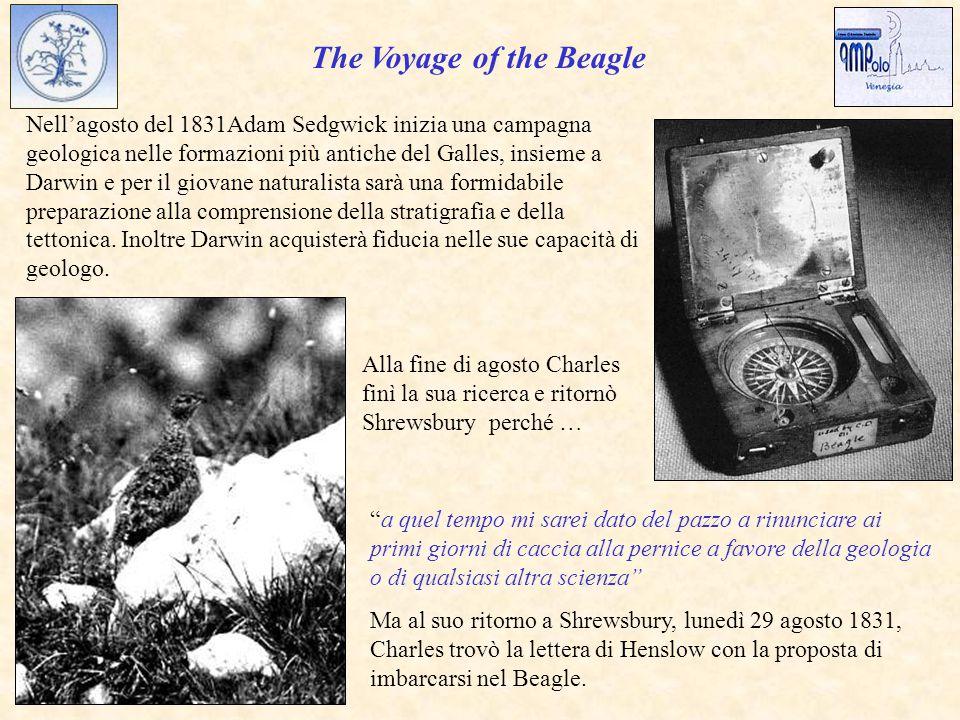 The Voyage of the Beagle a quel tempo mi sarei dato del pazzo a rinunciare ai primi giorni di caccia alla pernice a favore della geologia o di qualsiasi altra scienza Ma al suo ritorno a Shrewsbury, lunedì 29 agosto 1831, Charles trovò la lettera di Henslow con la proposta di imbarcarsi nel Beagle.