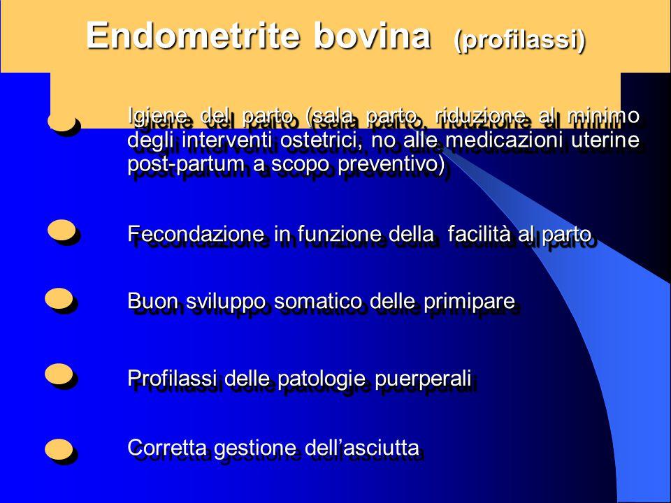 Endometrite bovina (profilassi) Igiene del parto (sala parto, riduzione al minimo degli interventi ostetrici, no alle medicazioni uterine post-partum
