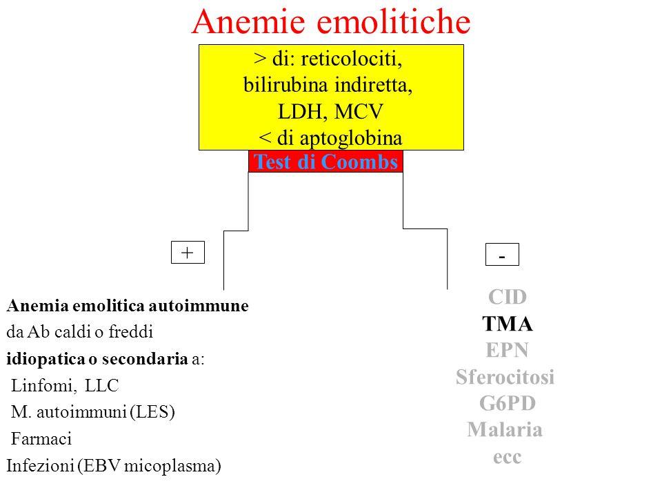 Anemie emolitiche Anemia emolitica autoimmune da Ab caldi o freddi idiopatica o secondaria a: Linfomi, LLC M. autoimmuni (LES) Farmaci Infezioni (EBV