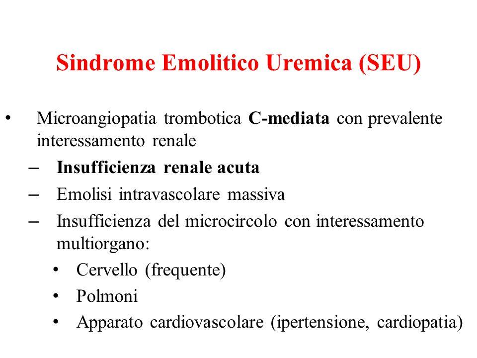 Sindrome Emolitico Uremica (SEU) Microangiopatia trombotica C-mediata con prevalente interessamento renale – Insufficienza renale acuta – Emolisi intr
