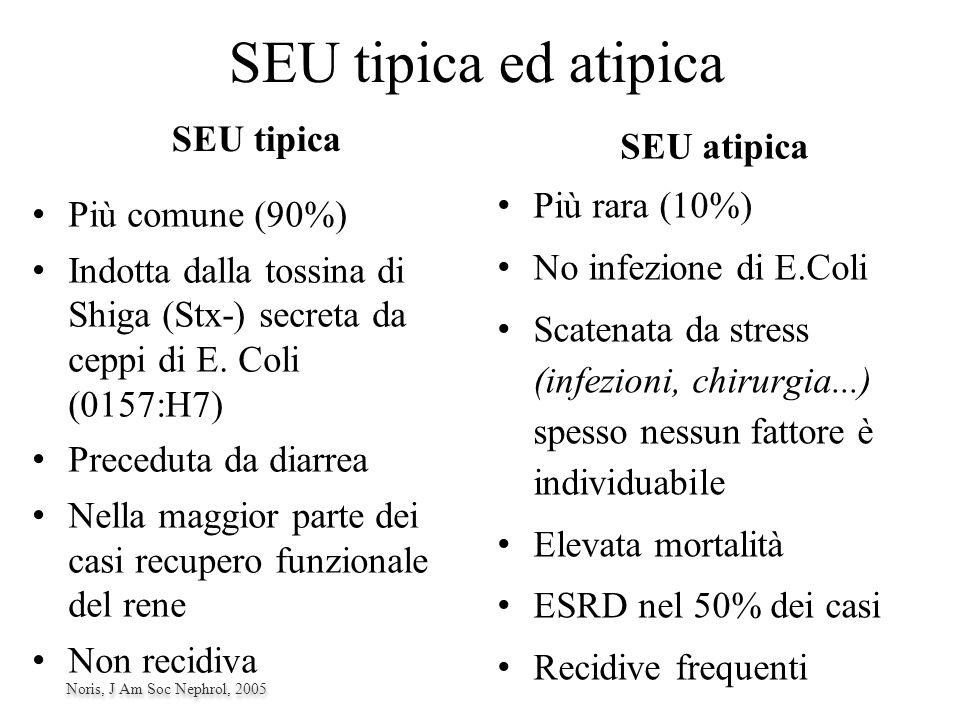 SEU tipica ed atipica SEU tipica SEU atipica Più rara (10%) No infezione di E.Coli Scatenata da stress (infezioni, chirurgia...) spesso nessun fattore