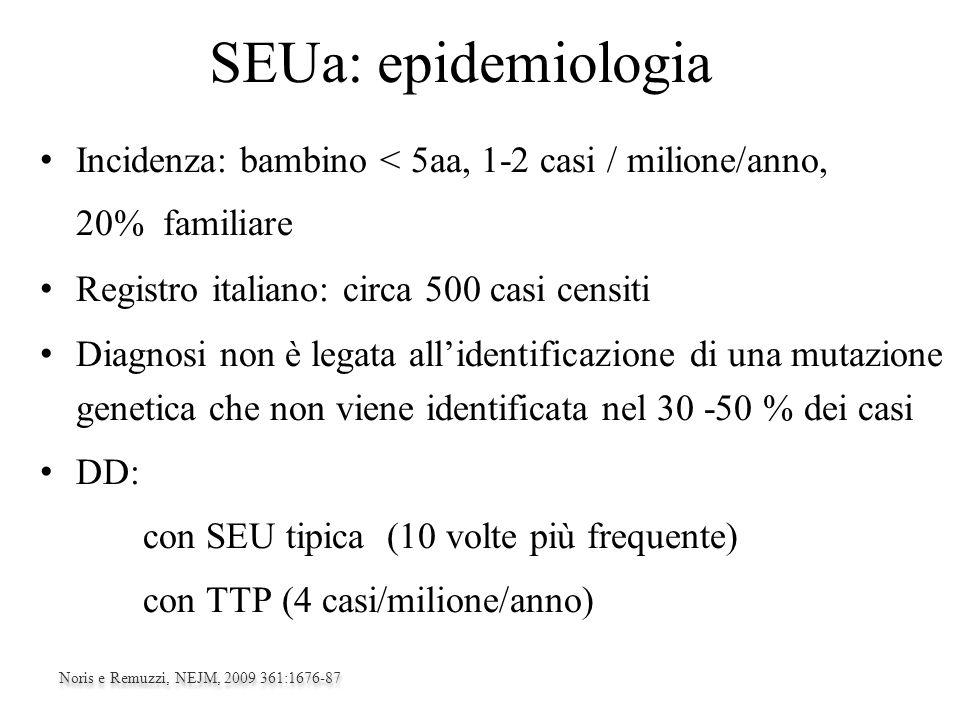 SEUa: epidemiologia Incidenza: bambino < 5aa, 1-2 casi / milione/anno, 20% familiare Registro italiano: circa 500 casi censiti Diagnosi non è legata a