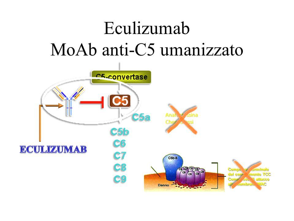 Eculizumab MoAb anti-C5 umanizzato AnafilatossinaChemiotassi Cellula Complesso terminale del complemento TCC Complesso di attacco alla membrana MAC