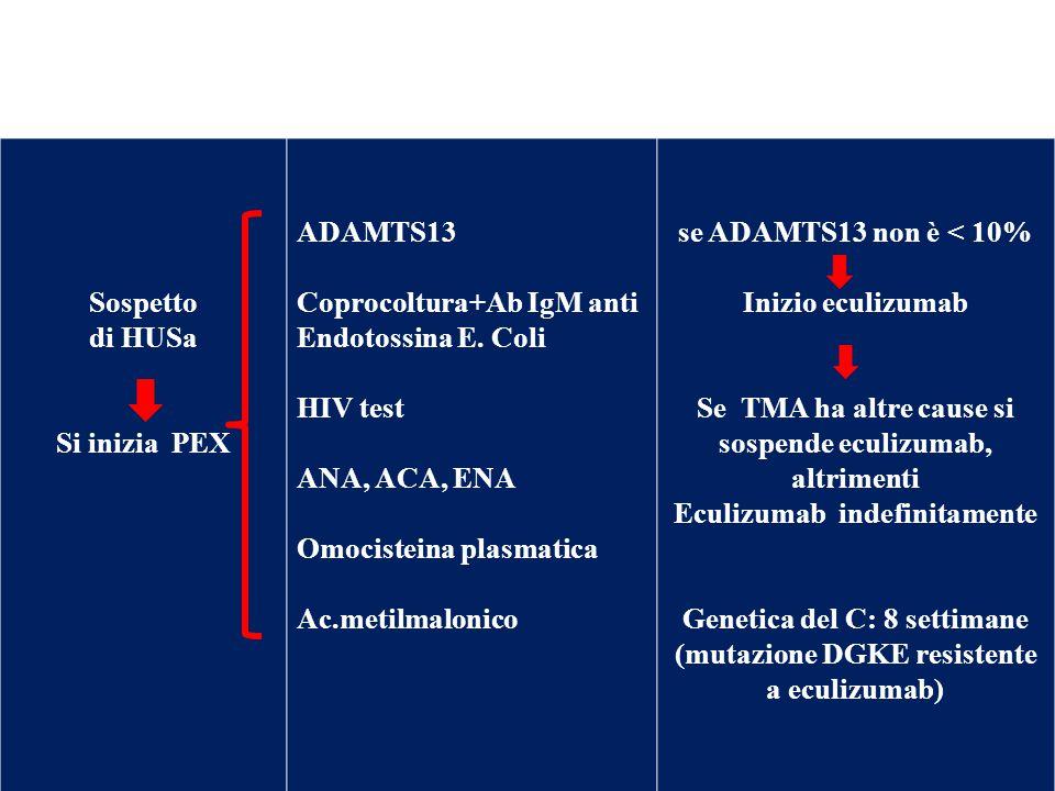 Sospetto di HUSa Si inizia PEX ADAMTS13 Coprocoltura+Ab IgM anti Endotossina E. Coli HIV test ANA, ACA, ENA Omocisteina plasmatica Ac.metilmalonico se