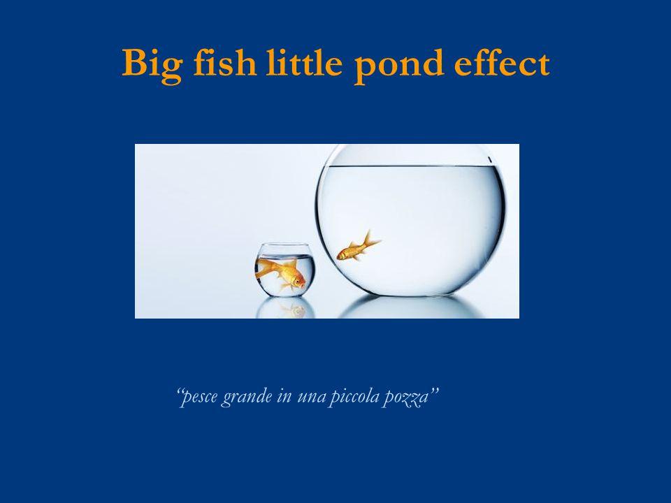Big fish little pond effect pesce grande in una piccola pozza
