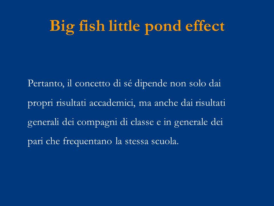 Big fish little pond effect Pertanto, il concetto di sé dipende non solo dai propri risultati accademici, ma anche dai risultati generali dei compagni di classe e in generale dei pari che frequentano la stessa scuola.