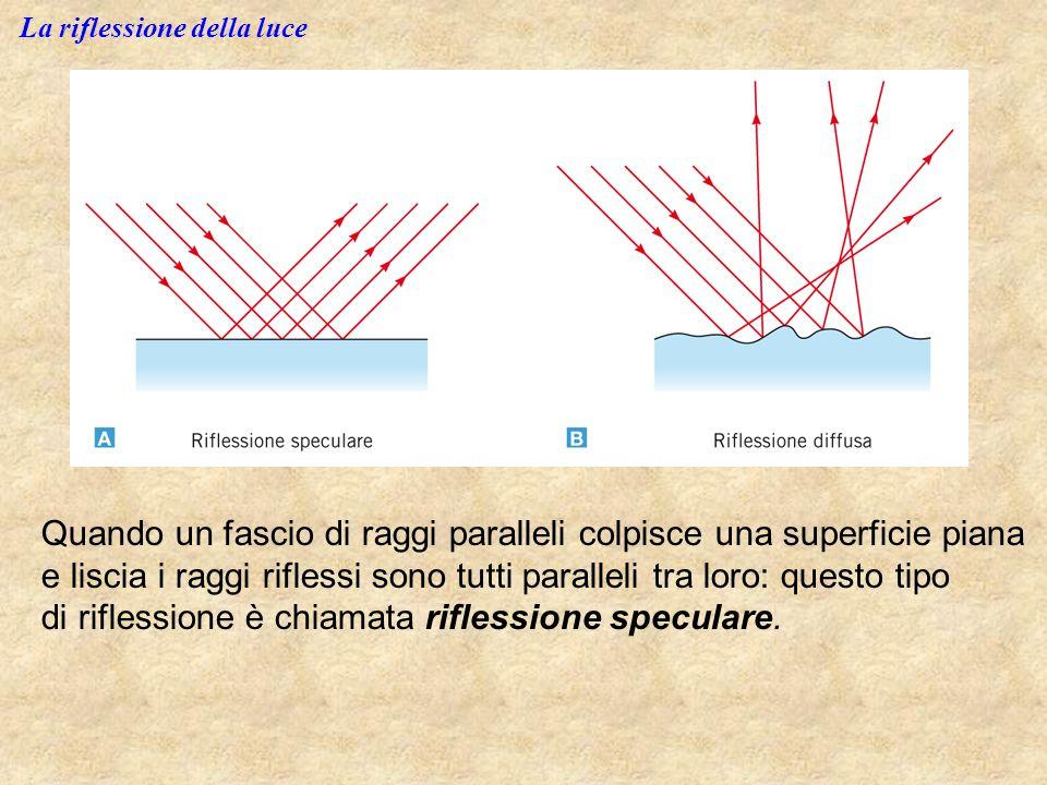 La riflessione della luce Quando un fascio di raggi paralleli colpisce una superficie piana e liscia i raggi riflessi sono tutti paralleli tra loro: q