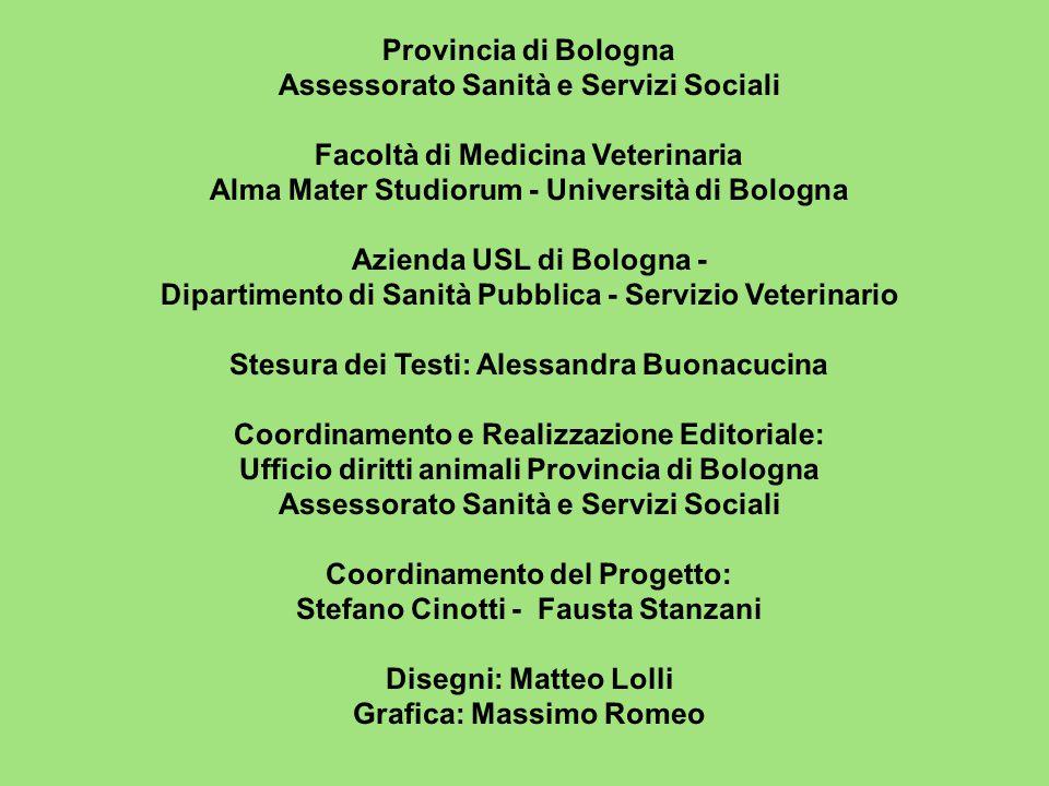 Provincia di Bologna Assessorato Sanità e Servizi Sociali Facoltà di Medicina Veterinaria Alma Mater Studiorum - Università di Bologna Azienda USL di