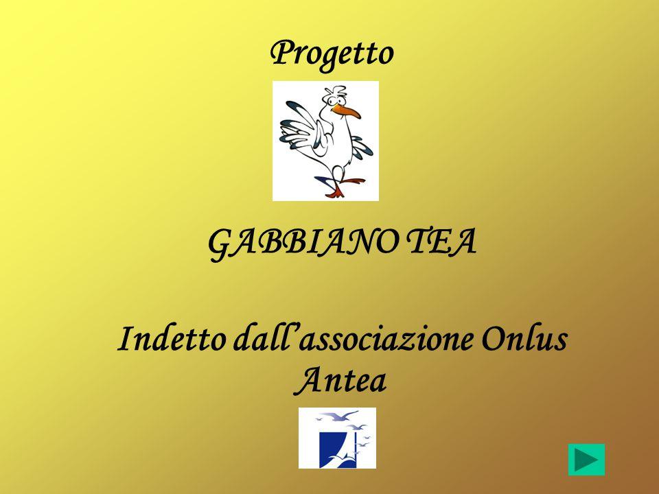 Progetto GABBIANO TEA Indetto dall'associazione Onlus Antea