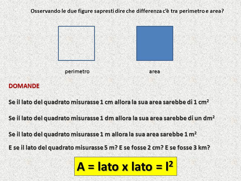 Cosa significa secondo te che la seguente figura ha un'area di 14 cm 2 .