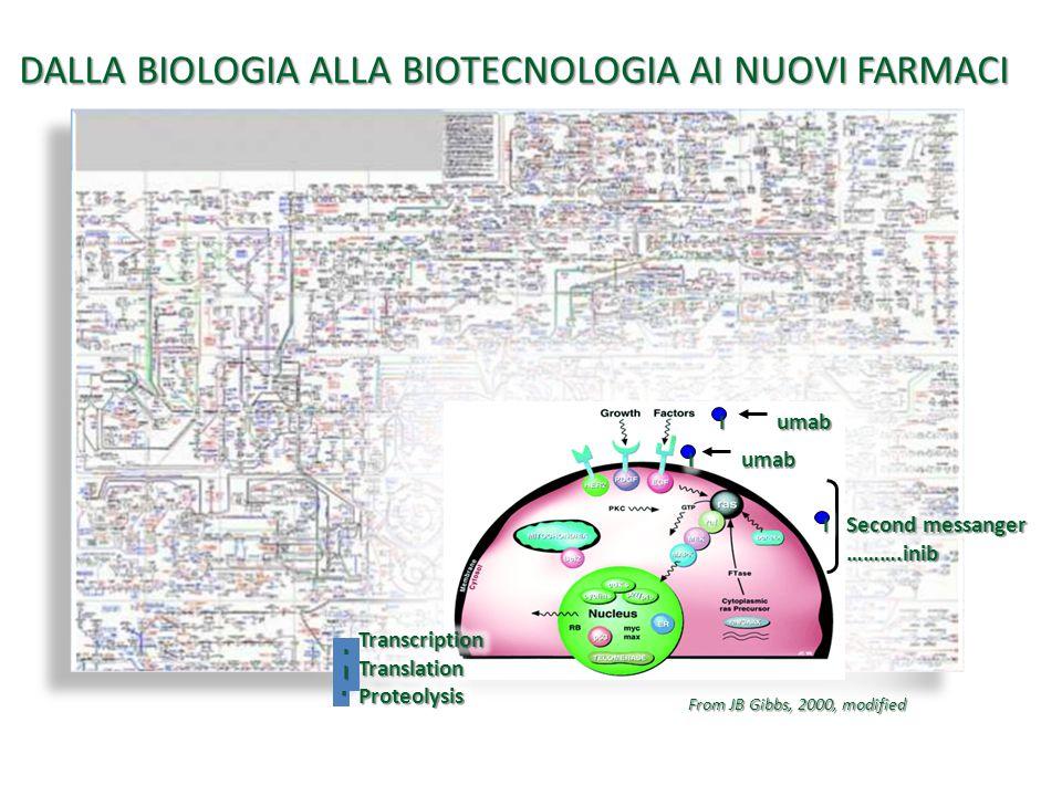 DALLA BIOLOGIA ALLA BIOTECNOLOGIA AI NUOVI FARMACI From JB Gibbs, 2000, modified III