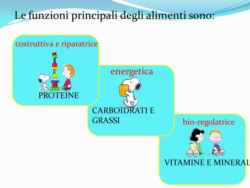Le funzioni principali degli alimenti sono: costruttiva e riparatrice energetica bio-regolatrice CARBOIDRATI E GRASSI PROTEINE VITAMINE E MINERALI