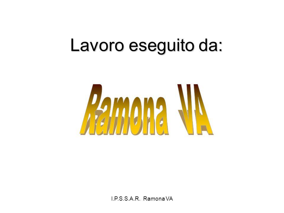 I.P.S.S.A.R. Ramona VA Lavoro eseguito da: