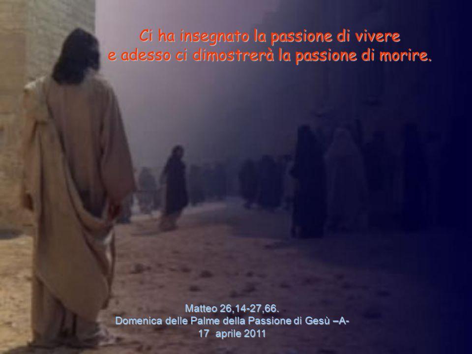 Matteo 26,14-27,66.