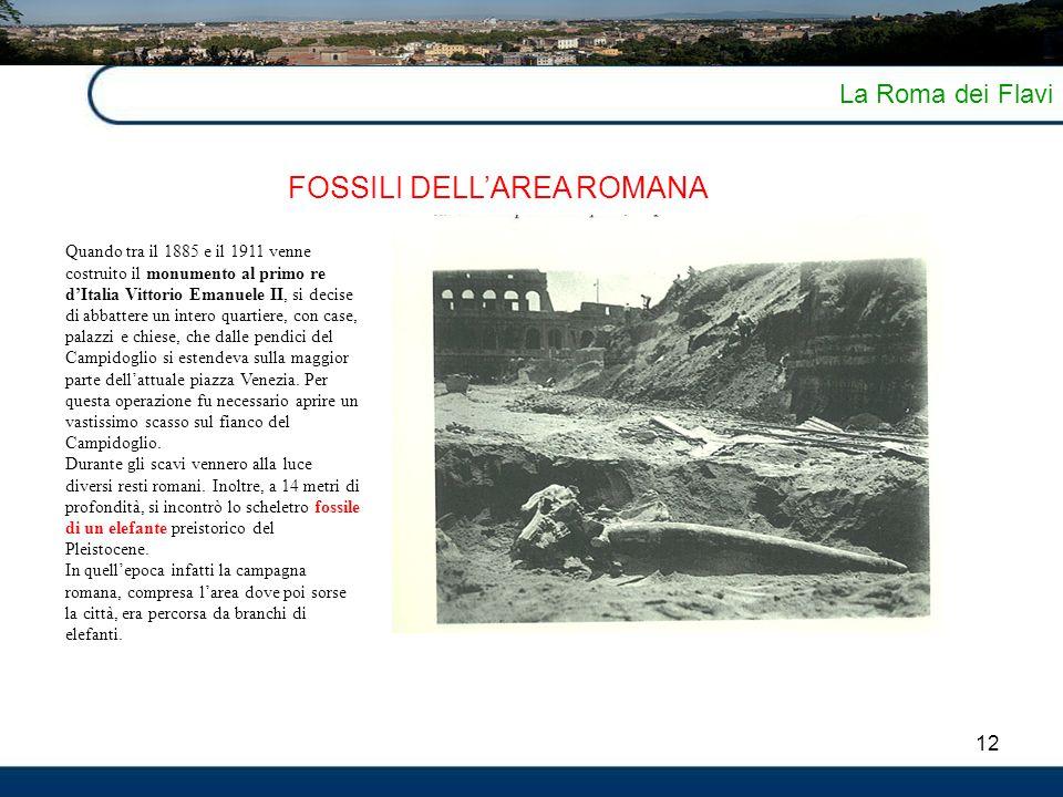 12 La Roma dei Flavi FOSSILI DELL'AREA ROMANA Quando tra il 1885 e il 1911 venne costruito il monumento al primo re d'Italia Vittorio Emanuele II, si
