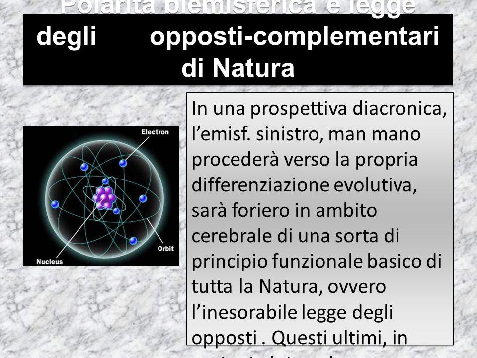Polarità biemisferica e legge degli opposti-complementari di Natura In una prospettiva diacronica, l'emisf. sinistro, man mano procederà verso la prop