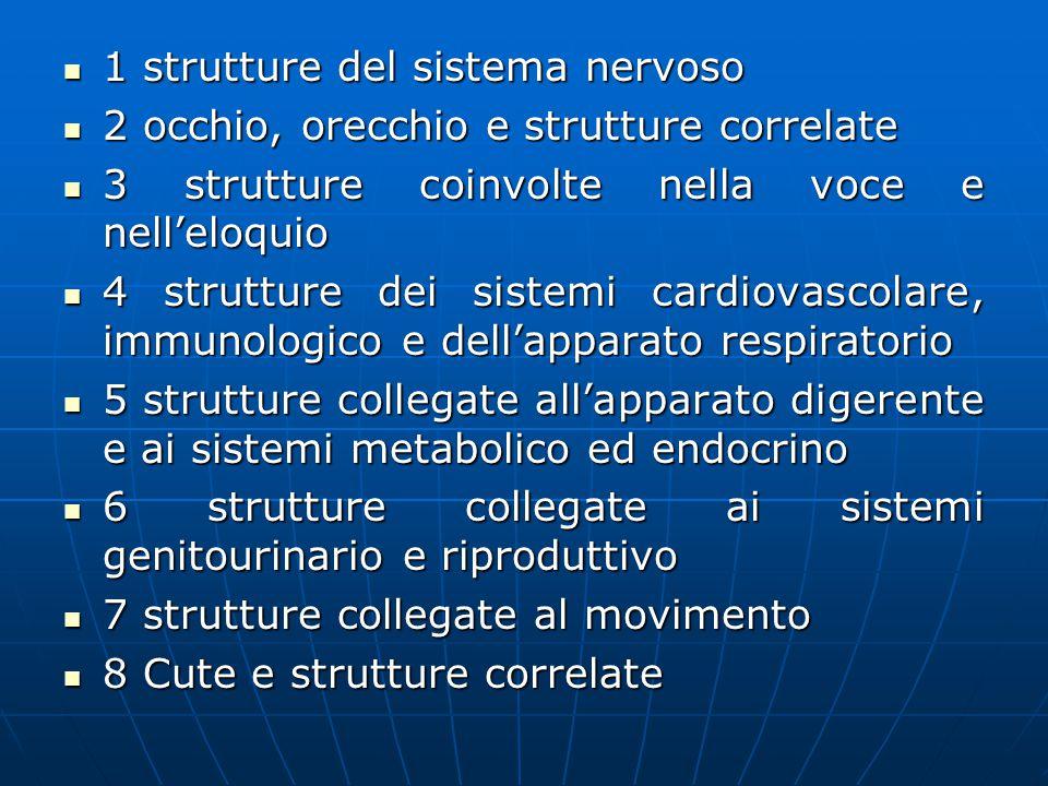 1 strutture del sistema nervoso 1 strutture del sistema nervoso 2 occhio, orecchio e strutture correlate 2 occhio, orecchio e strutture correlate 3 strutture coinvolte nella voce e nell'eloquio 3 strutture coinvolte nella voce e nell'eloquio 4 strutture dei sistemi cardiovascolare, immunologico e dell'apparato respiratorio 4 strutture dei sistemi cardiovascolare, immunologico e dell'apparato respiratorio 5 strutture collegate all'apparato digerente e ai sistemi metabolico ed endocrino 5 strutture collegate all'apparato digerente e ai sistemi metabolico ed endocrino 6 strutture collegate ai sistemi genitourinario e riproduttivo 6 strutture collegate ai sistemi genitourinario e riproduttivo 7 strutture collegate al movimento 7 strutture collegate al movimento 8 Cute e strutture correlate 8 Cute e strutture correlate