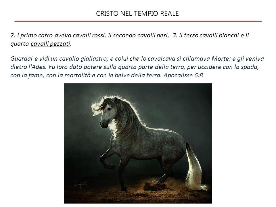 CRISTO NEL TEMPIO REALE 4.
