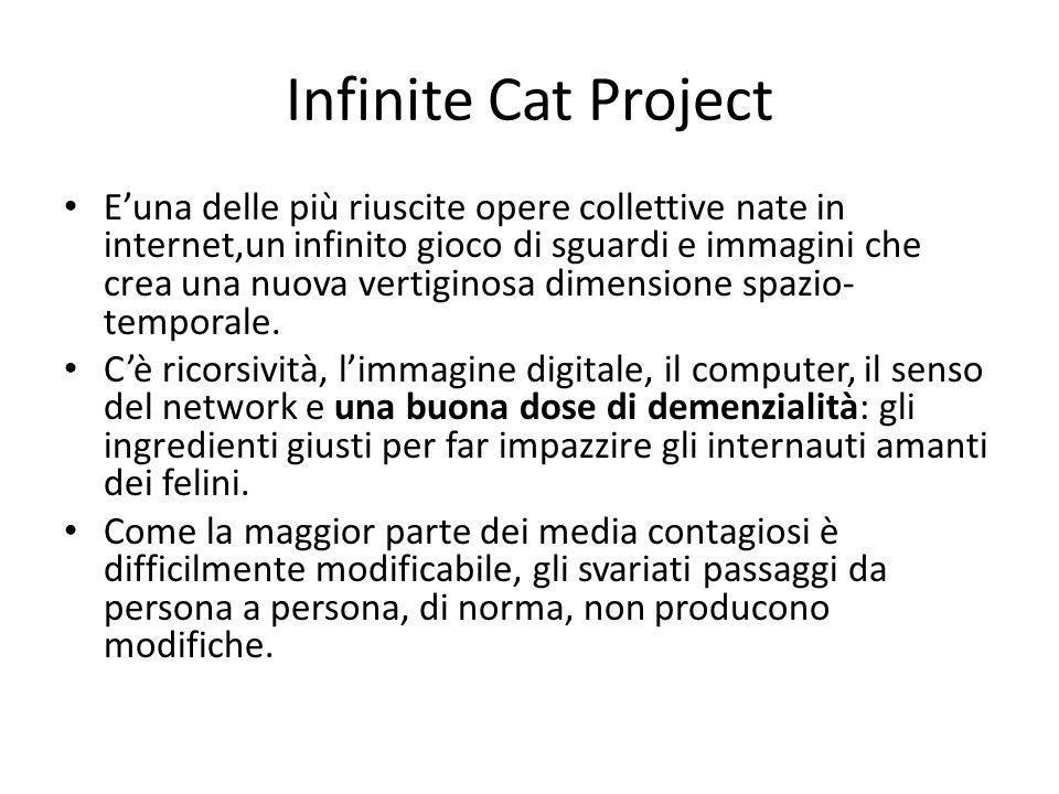 Infinite Cat Project E'una delle più riuscite opere collettive nate in internet,un infinito gioco di sguardi e immagini che crea una nuova vertiginosa dimensione spazio- temporale.