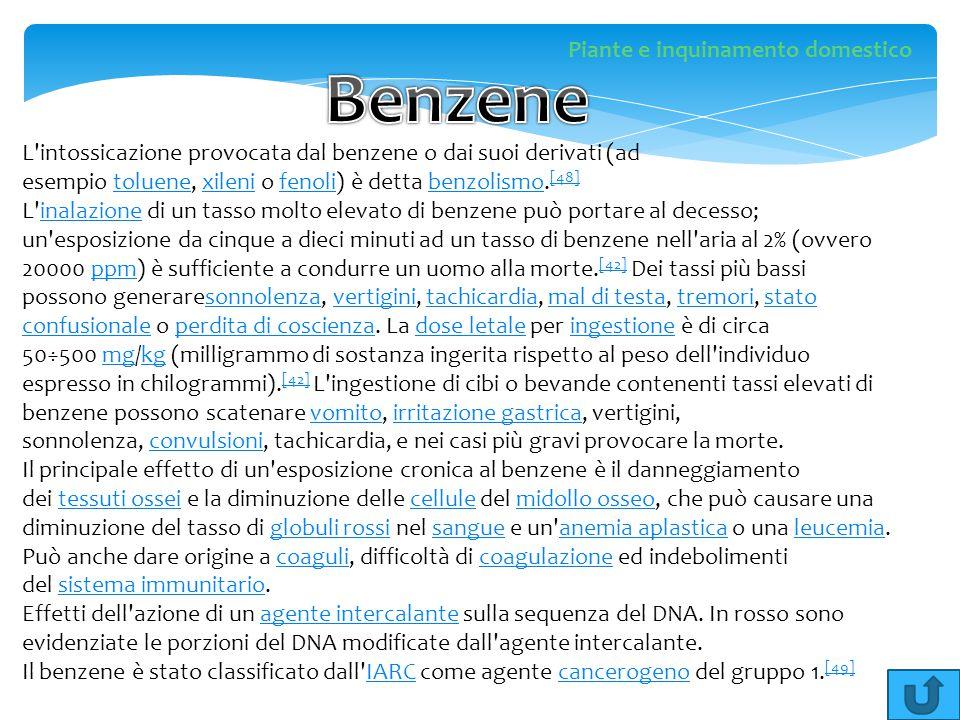 L'intossicazione provocata dal benzene o dai suoi derivati (ad esempio toluene, xileni o fenoli) è detta benzolismo. [48]toluenexilenifenolibenzolismo