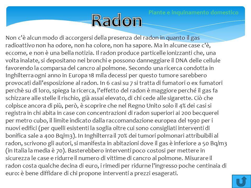 Non c'è alcun modo di accorgersi della presenza del radon in quanto il gas radioattivo non ha odore, non ha colore, non ha sapore. Ma in alcune case c