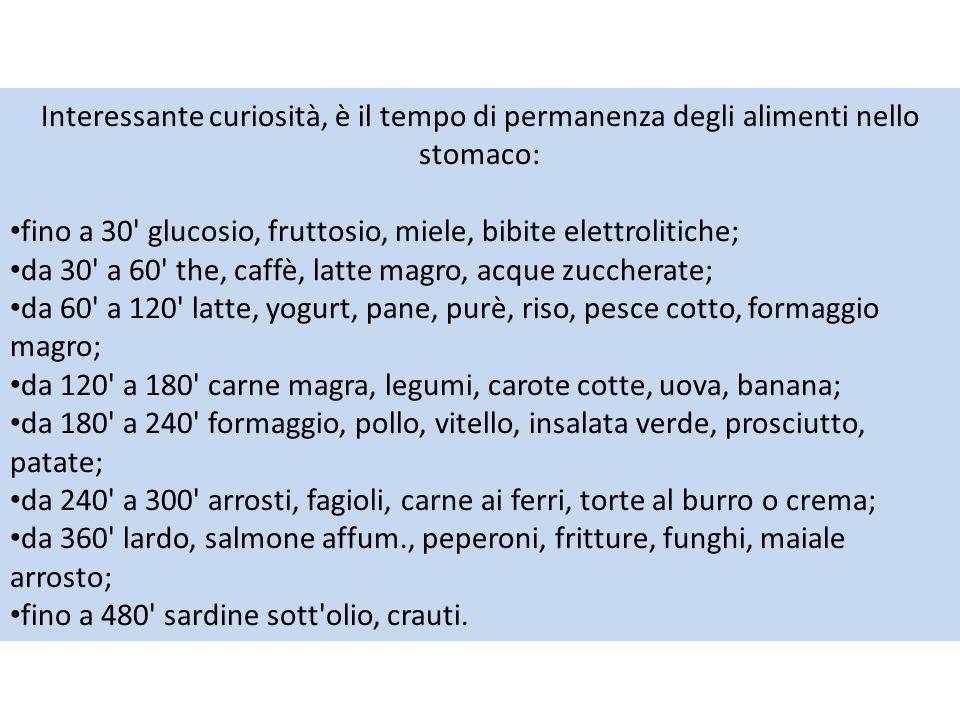 Interessante curiosità, è il tempo di permanenza degli alimenti nello stomaco: fino a 30' glucosio, fruttosio, miele, bibite elettrolitiche; da 30' a
