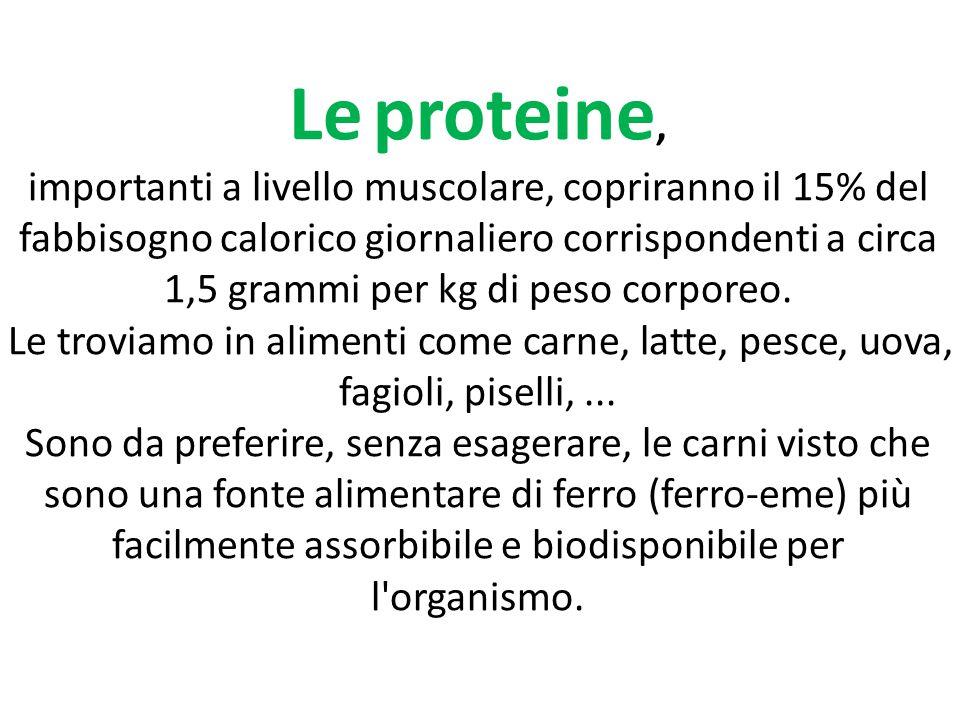 Le proteine, importanti a livello muscolare, copriranno il 15% del fabbisogno calorico giornaliero corrispondenti a circa 1,5 grammi per kg di peso co