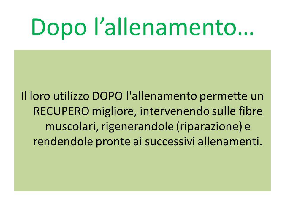 Dopo l'allenamento… Il loro utilizzo DOPO l'allenamento permette un RECUPERO migliore, intervenendo sulle fibre muscolari, rigenerandole (riparazione)