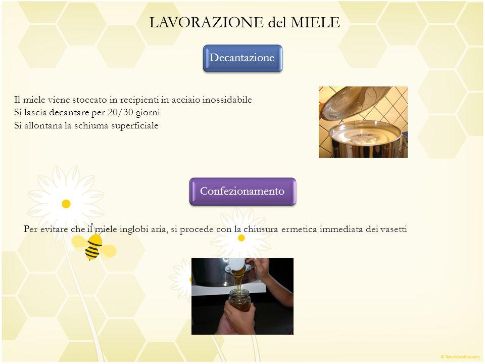 LAVORAZIONE del MIELE Decantazione Il miele viene stoccato in recipienti in acciaio inossidabile Si lascia decantare per 20/30 giorni Si allontana la