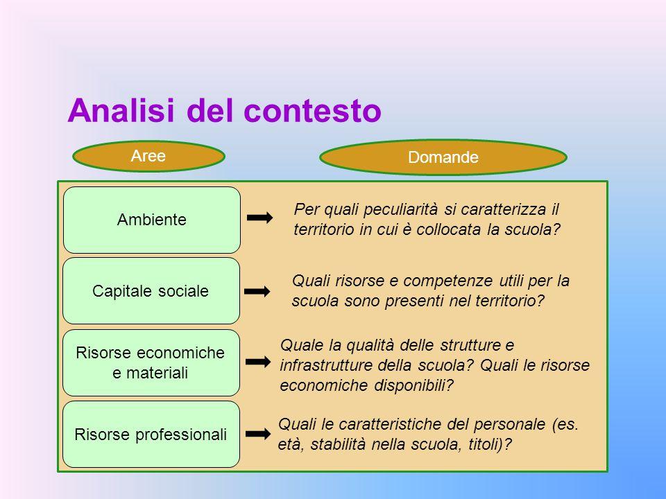 Analisi del contesto Capitale sociale Ambiente Risorse economiche e materiali Risorse professionali Quali le caratteristiche del personale (es. età, s