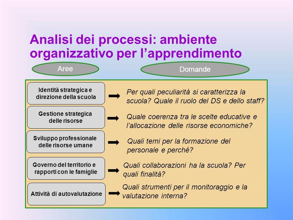 Analisi dei processi: ambiente organizzativo per l'apprendimento Identità strategica e direzione della scuola Quali strumenti per il monitoraggio e la