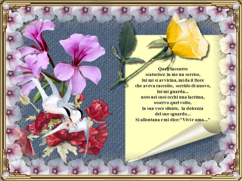 Quell incontro scaturisce in me un sorriso, lui mi si avvicina, mi da il fiore che aveva raccolto, sorrido di nuovo, lui mi guarda...