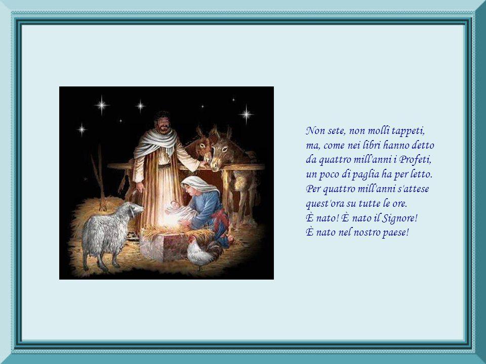 È nato! Alleluja! È nato il Sovrano Bambino. La notte, che già fu sì buia, risplende d'un astro divino. Orsù, cornamuse, più gaje suonate; squillate,