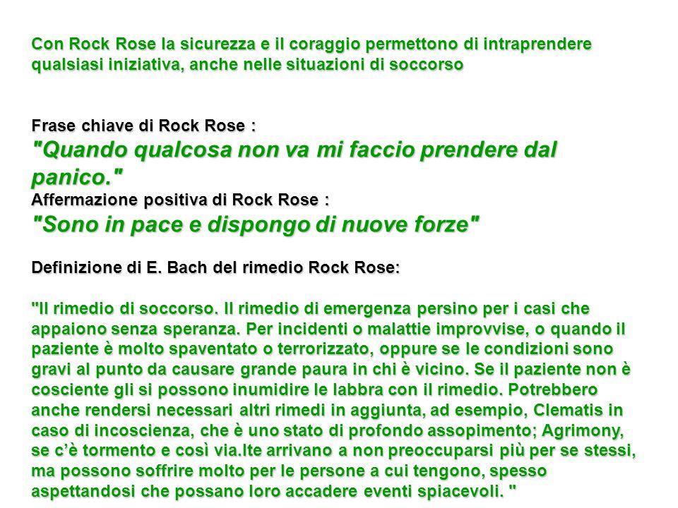 Con Rock Rose la sicurezza e il coraggio permettono di intraprendere qualsiasi iniziativa, anche nelle situazioni di soccorso Frase chiave di Rock Ros