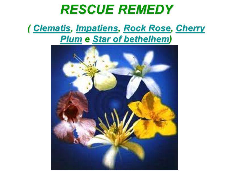 RESCUE REMEDY ( Clematis, Impatiens, Rock Rose, Cherry Plum e Star of bethelhem) ClematisImpatiensRock RoseCherry PlumStar of bethelhemClematisImpatie