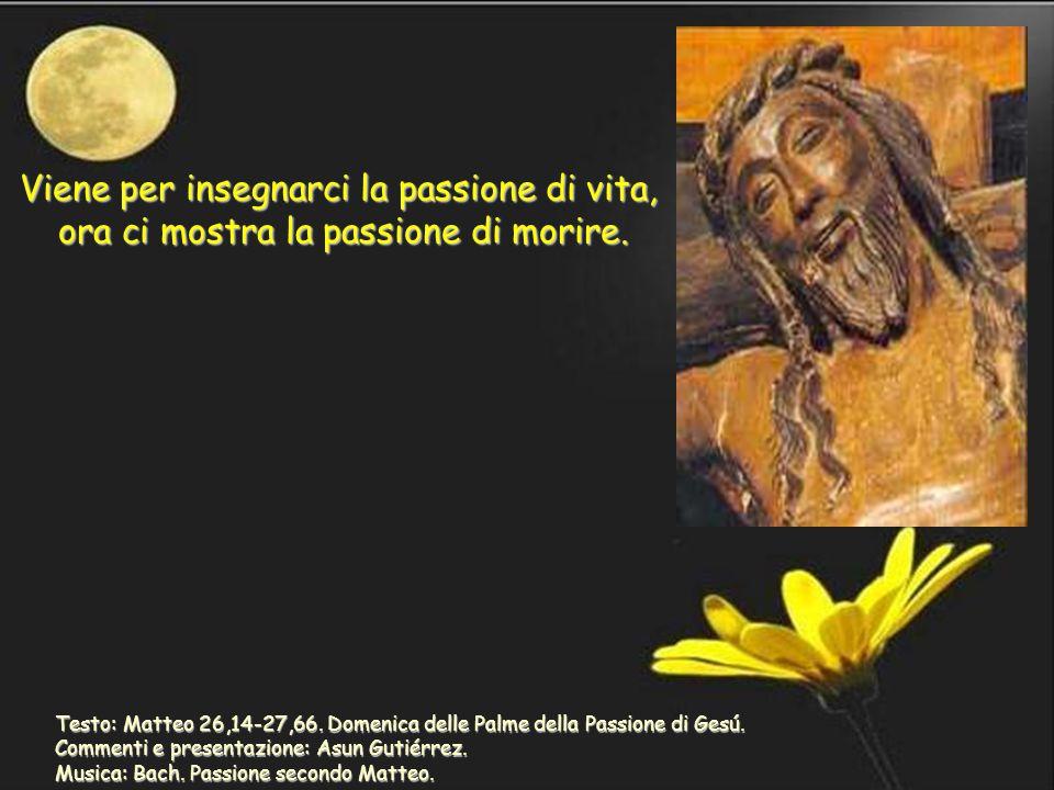 Testo: Matteo 26,14-27,66.Domenica delle Palme della Passione di Gesú.