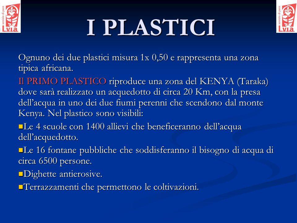 I PLASTICI Ognuno dei due plastici misura 1x 0,50 e rappresenta una zona tipica africana.