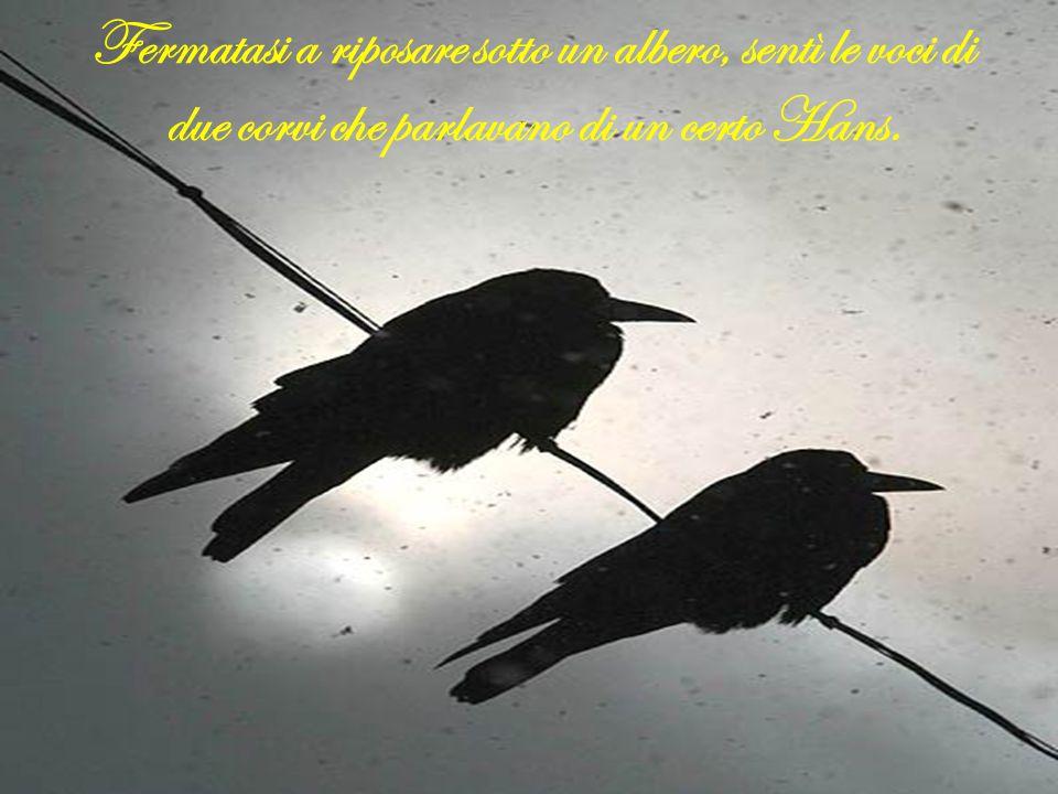Fermatasi a riposare sotto un albero, sentì le voci di due corvi che parlavano di un certo Hans.
