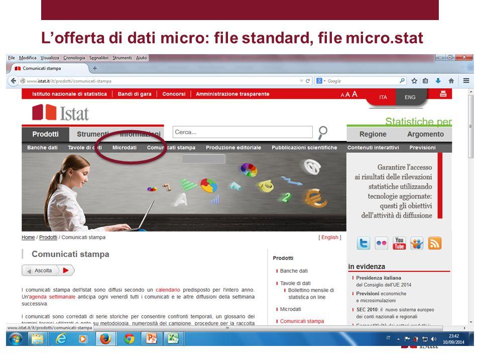 L'offerta di dati micro: file standard, file micro.stat
