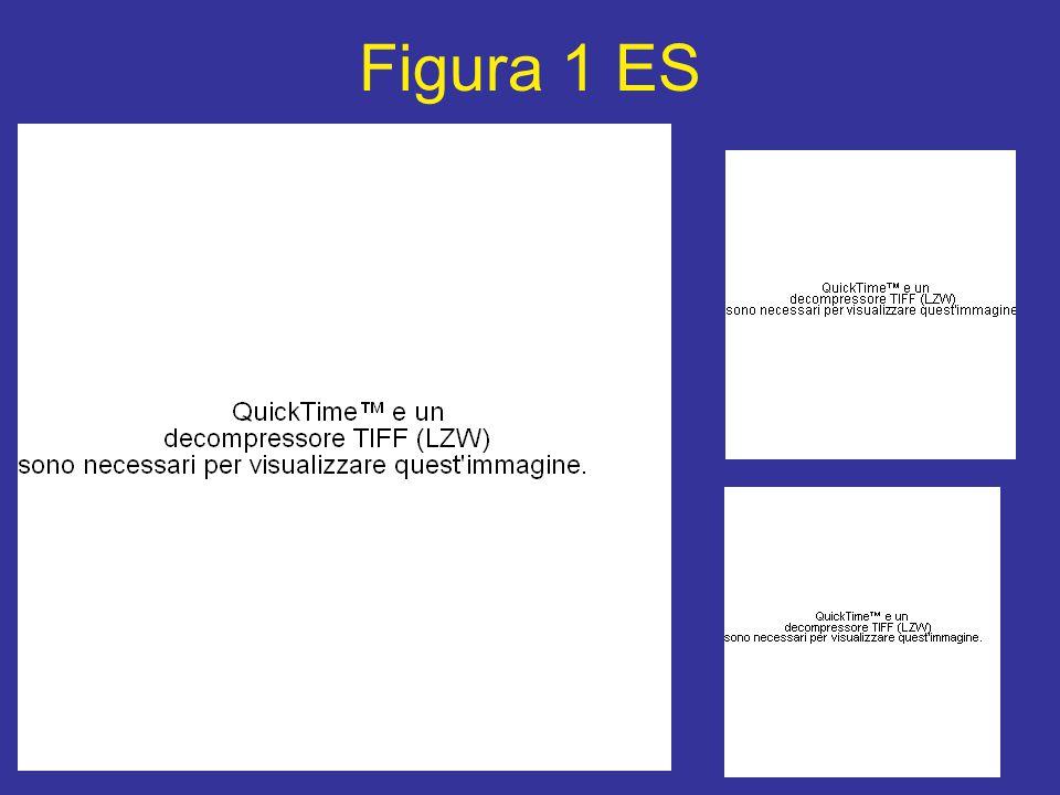 Figura 1 ES