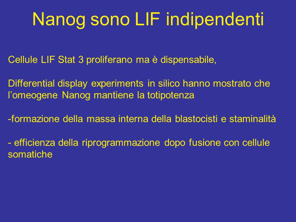 Nanog sono LIF indipendenti Cellule LIF Stat 3 proliferano ma è dispensabile, Differential display experiments in silico hanno mostrato che l'omeogene