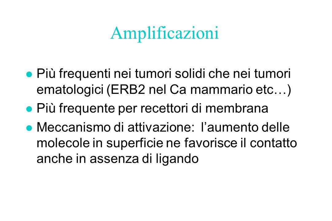 Amplificazioni l Più frequenti nei tumori solidi che nei tumori ematologici (ERB2 nel Ca mammario etc…) l Più frequente per recettori di membrana l Me