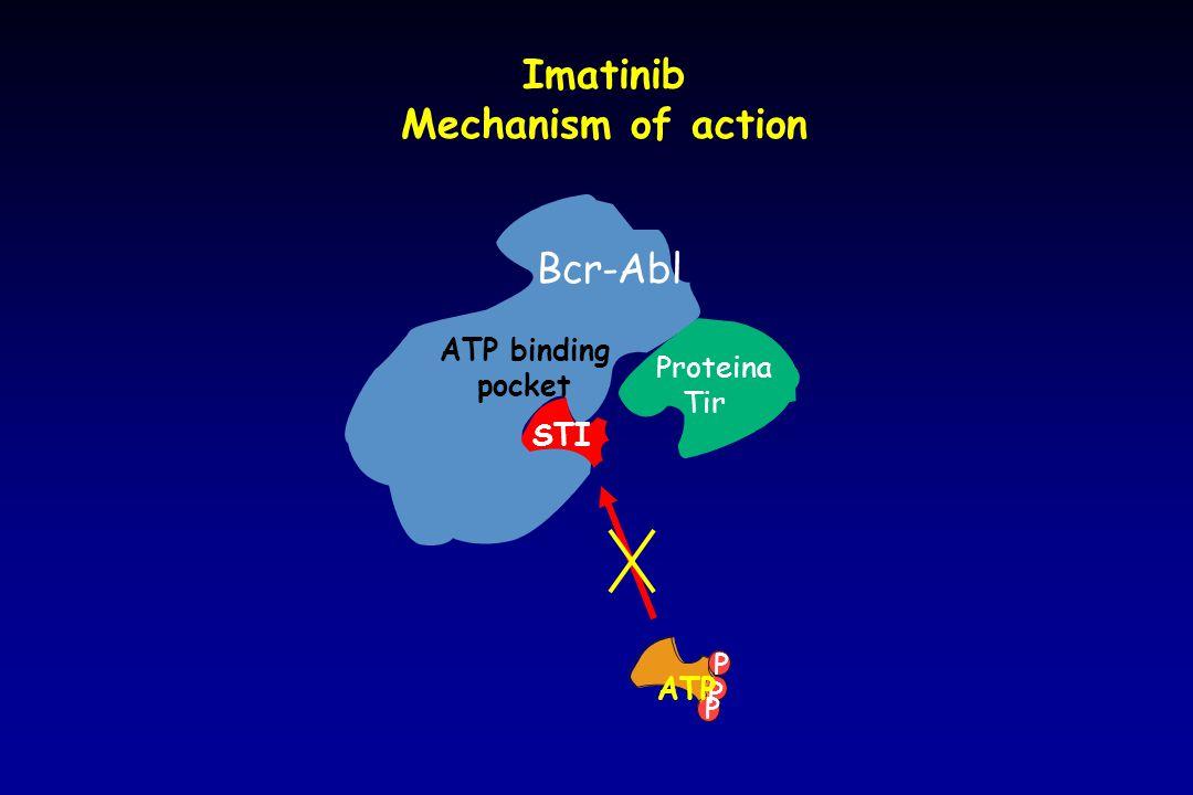 Bcr-Abl Imatinib Mechanism of action Proteina Tir P P ATP P STI ATP binding pocket
