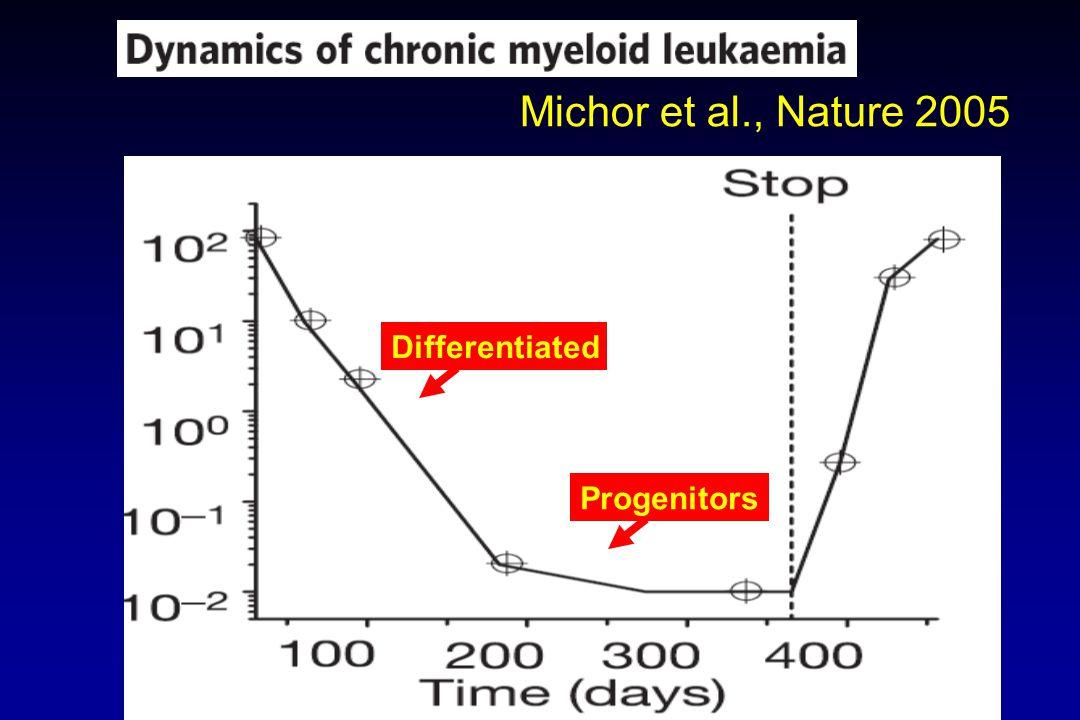 Michor et al., Nature 2005 Differentiated Progenitors