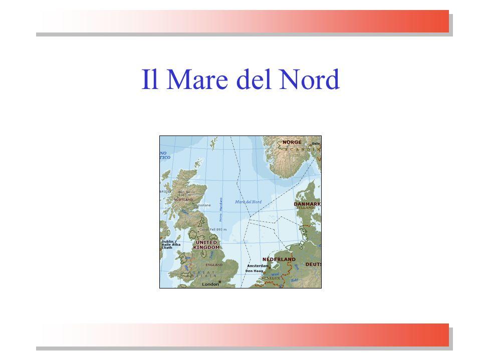 Padova, 3.2.2005prof. Renato Guseo19 Il Mare del Nord