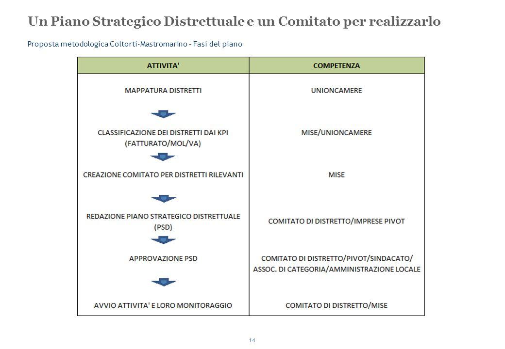 14 Un Piano Strategico Distrettuale e un Comitato per realizzarlo Proposta metodologica Coltorti-Mastromarino – Fasi del piano