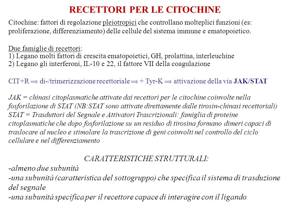 RECETTORI PER LE CITOCHINE Citochine: fattori di regolazione pleiotropici che controllano molteplici funzioni (es: proliferazione, differenziamento) d