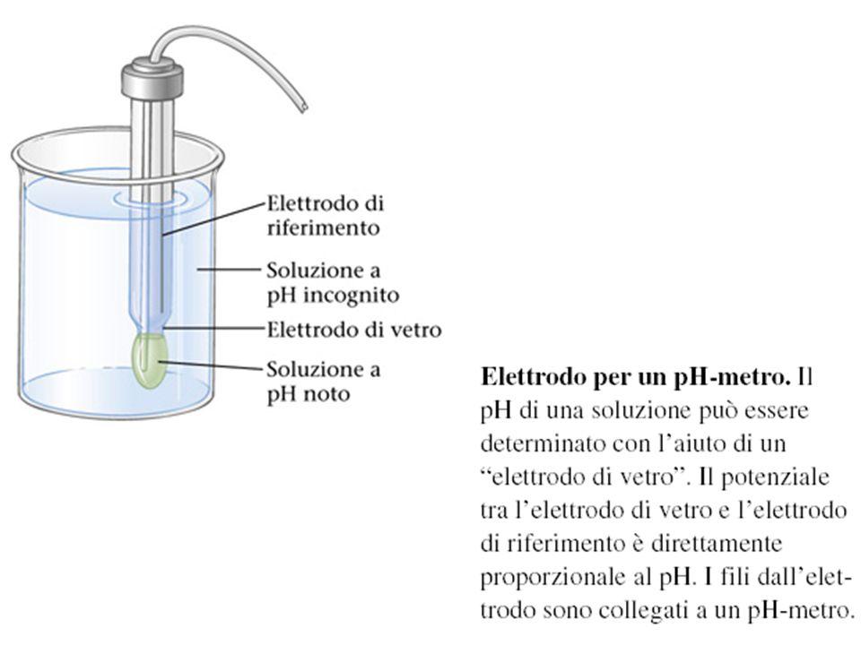 Elettrodo per un pH-metro