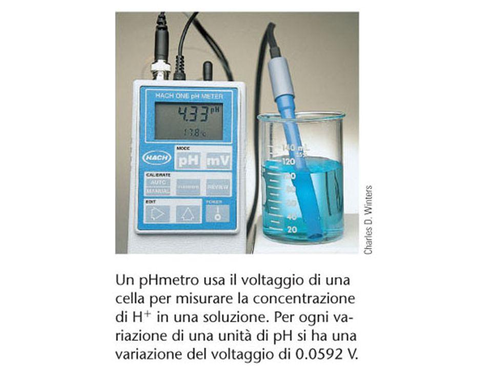 Un pHmetro usa il voltaggio di una cella per misurare la concentrazione di H + in una soluzione
