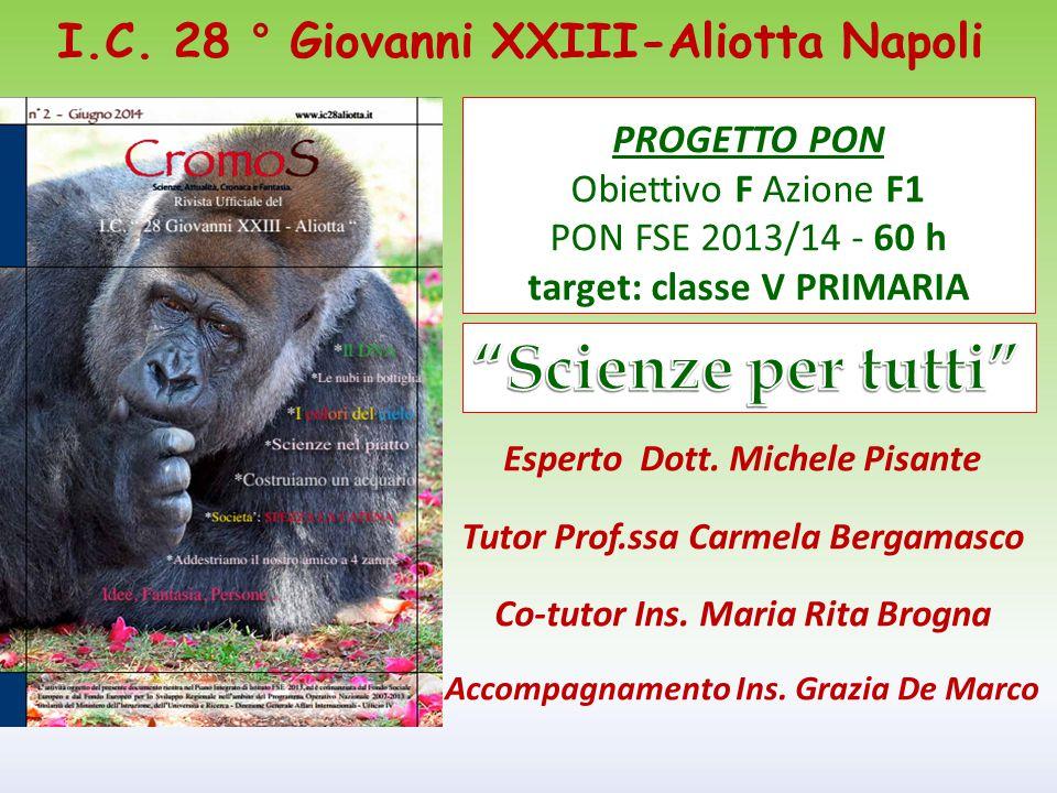 PROGETTO PON Obiettivo F Azione F1 PON FSE 2013/14 - 60 h target: classe V PRIMARIA Esperto Dott. Michele Pisante Tutor Prof.ssa Carmela Bergamasco Co